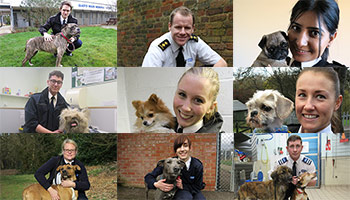 Montage of RSPCA Inspectors profile pictures © RSPCA