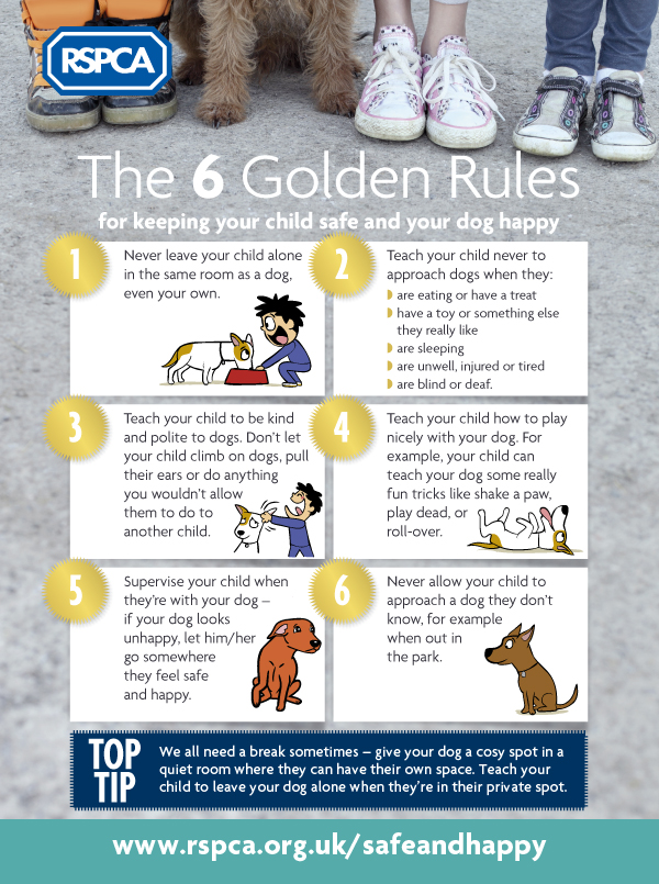 RSPCA The six golden rules to keeping children safe and dogs happy