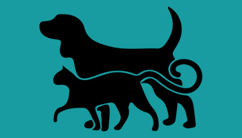 cat and dog graphic