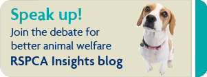 Join the debate for better animal welfare RSPCA Insights © RSPCA