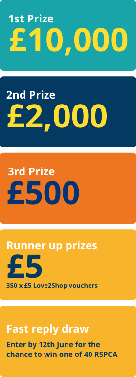 1st prize: £10,000; 2nd prize: £2,000; 3rd prize: £500; Runner up prizes: 350 x £5 Love2Shop vouchers; Fast reply draw: Enter by 25th September for the chance to win one of 40 RSPCA tote bags