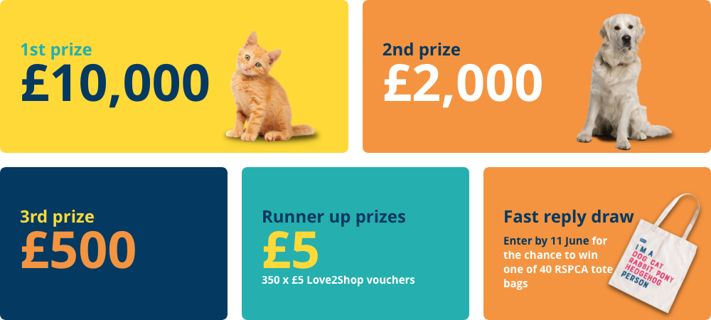 1st prize: £10,000; 2nd prize: £2,000; 3rd prize: £500; Runner up prizes: 350 x £5 Love2Shop vouchers; Fast reply draw: Enter by 11th June for the chance to win one of 40 RSPCA tote bags