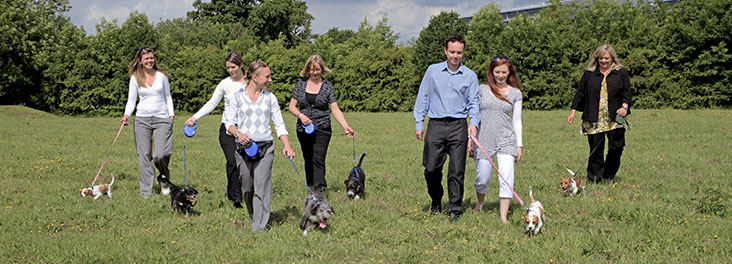 Foster carers walking through field © RSPCA Photolibrary