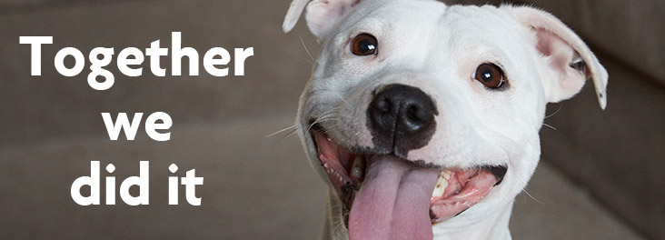 Together we did it © RSPCA