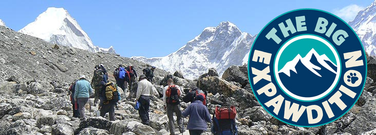 People trekking up towards Everest Base Camp