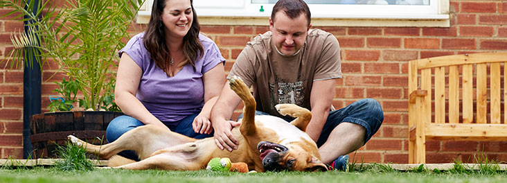 A couple playign with their new adopted dog © RSPCA photolibrary