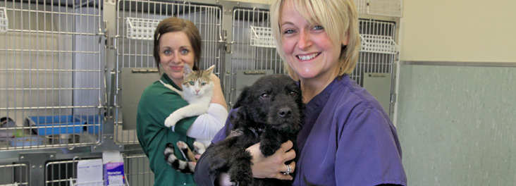 Animal Centre senior clinician veterinary nurse holding cat Robbie and patterdale terrier Robbie © RSPCA photolibrary