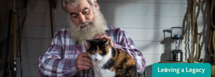 Man holding white, black and ginger cat © RSPCA photolibrary