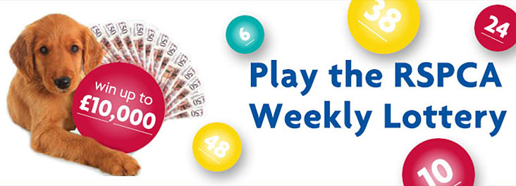 Win our summer jackpot by playing the lottery © RSPCA