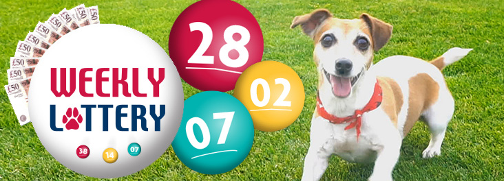 RSPCA Weekly Lottery © RSPCA photolibrary