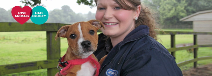 Love Animals. Hate Cruelty. RSPCA Staff member holding a puppy.