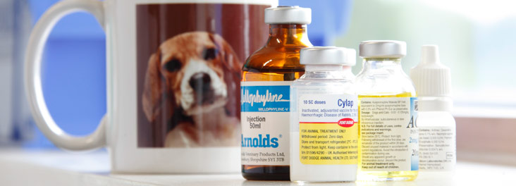 medical testing on animals used to Read the four main reasons why animals are used in medical research  testing on animals also serves to protect consumers, workers and the environment from the .