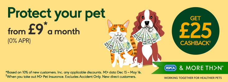 Protect your pet from £9 a month © MORE THAN
