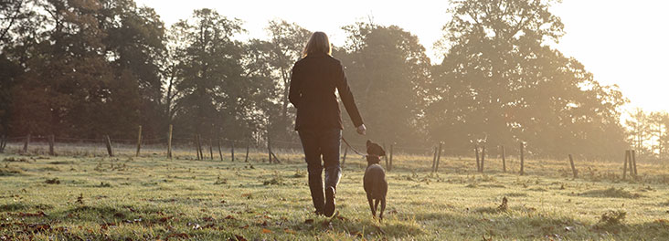 Dog Walking Woman walking with dog through field in early morning light © RSPCA Photolibrary