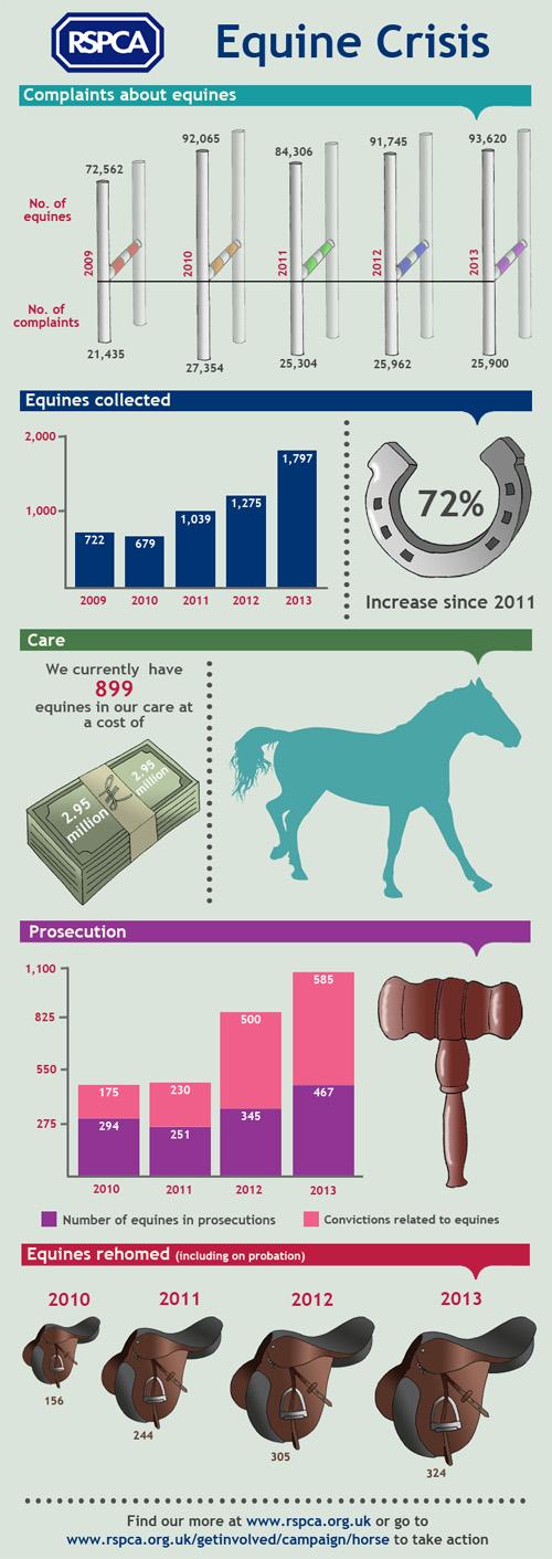 RSPCA Equine crisis