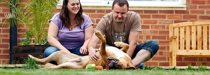 Couple sitting in the garden with their dog © RSPCA photolibrary
