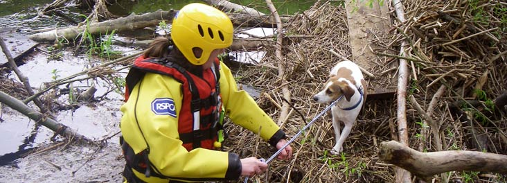 Inspector rescuing Jack Russell terrier © RSPCA photolibrary
