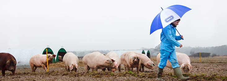 Advice for every season. Kate Parkes in the rain on a farm © RSPCA photolibrary