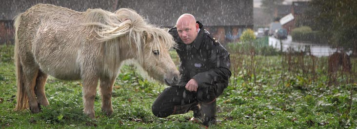 Inspector rescuing horse in the rain © RSPCA photolibrary