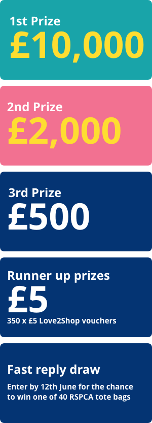 1st prize: £10,000; 2nd prize: £2,000; 3rd prize: £500; Runner up prizes: 350 x £5 Love2Shop vouchers; Fast reply draw: Enter by 12th June for the chance to win one of 40 RSPCA tote bags